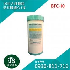 台灣製 10吋大胖顆粒活性碳濾心 1支