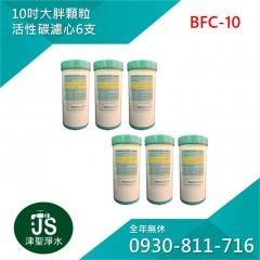 台灣製 10吋大胖顆粒活性碳濾心 6支