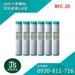 台灣製 20吋大胖顆粒活性碳濾心 6支