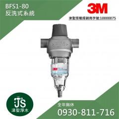 3M BFS1-80 反洗式系統